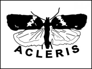 Acleris logo (MK-monitoimi)